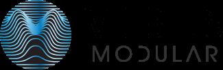 Vibes Modular smartphone cases