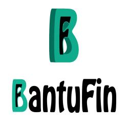 BantuFin Credit Score